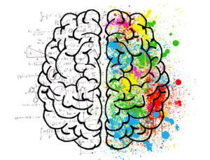 Gehrinhälften Gehirnhautentzündung FSME