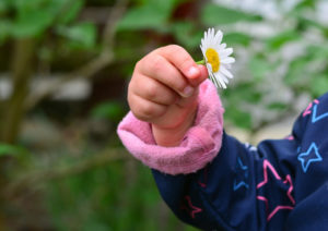 Kinder Permethrin Hand Giftig