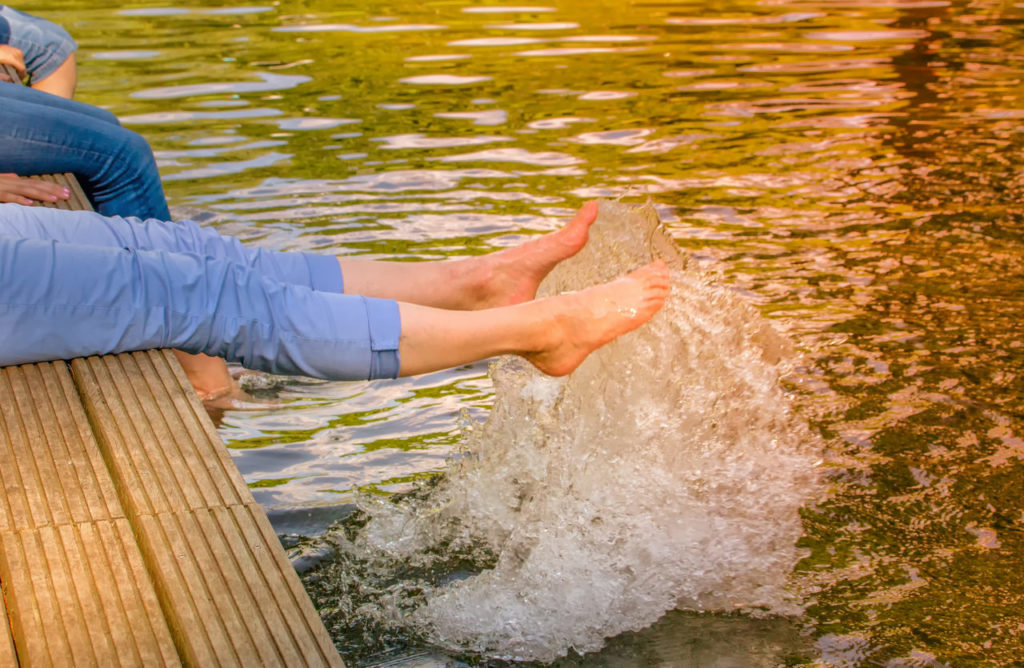 Pyrethrum ist giftig für Wasserorganismen