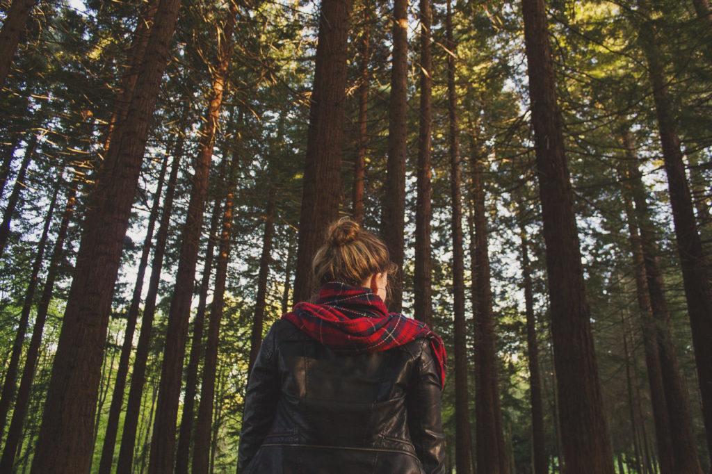 Zeckenschutz Jacke Wald