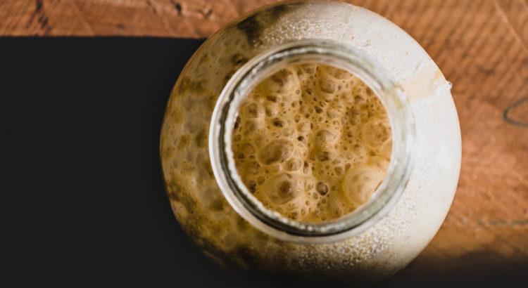 Bierhefe gegen Zecken