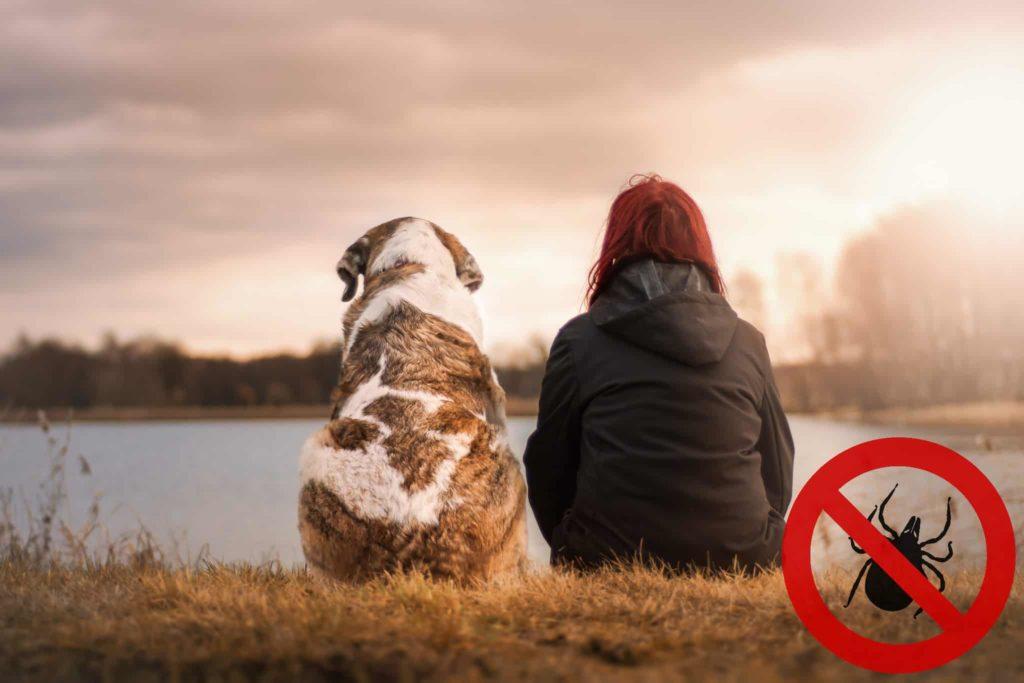 Mensch und Hund