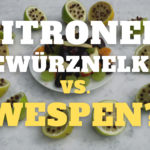 Zitronen & Nelken gegen Wespen im Test: Wirksam oder Mythos?