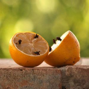 Zitronen und Gewürznelken