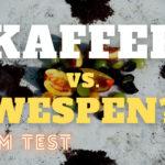 Kaffee gegen Wespen im Test | Mit Kaffeerauch Wespen vertreiben?